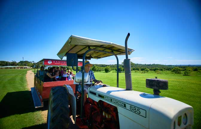 A group of visitors tours the farm on a tractor tour